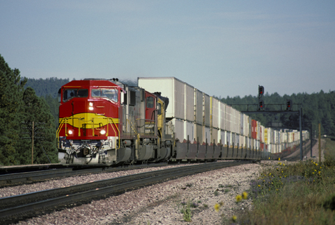 Railroad_Train_Lg_jpg2